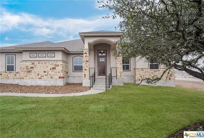 New Braunfels Single Family Home For Sale: 680 Cambridge