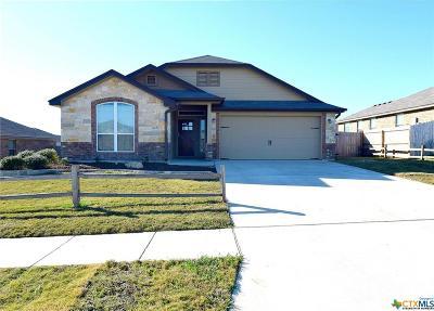 Killeen Single Family Home For Sale: 3208 Alamocitos Creek