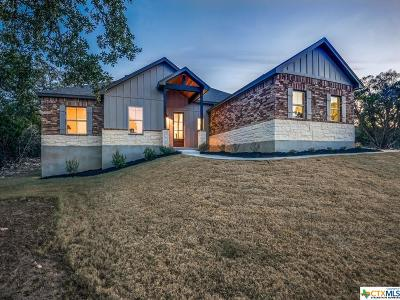 New Braunfels TX Single Family Home For Sale: $386,900