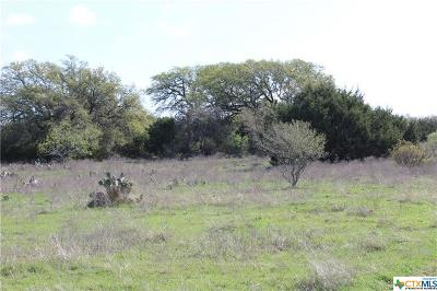 Salado Residential Lots & Land For Sale: Track 5 Shiny Top Ranch Lane