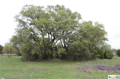 Salado Residential Lots & Land For Sale: Track 10 Shiny Top Ranch Lane