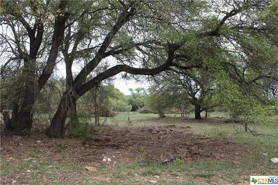 Salado Residential Lots & Land For Sale: Track 12 Shiny Top Ranch Lane