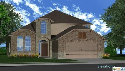 Harker Heights Single Family Home For Sale: 3223 Vineyard Trail
