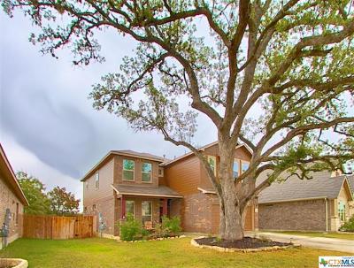 San Antonio Single Family Home For Sale: 22706 Allegro Creek