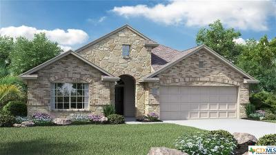 New Braunfels Single Family Home For Sale: 442 Pecan Meadows