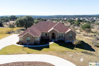 New Braunfels Single Family Home Pending Take Backups: 1475 Decanter