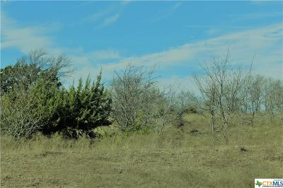 Bell County, Burnet County, Coryell County, Lampasas County, Llano County, McLennan County, Mills County, San Saba County, Williamson County Residential Lots & Land For Sale: 2022 Alexander Road