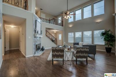 New Braunfels Single Family Home For Sale: 101 Mission Drive