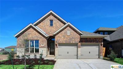 San Marcos Single Family Home For Sale: 209 Lacey Oak