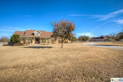 New Braunfels Single Family Home For Sale: 244 Texas Country Drive