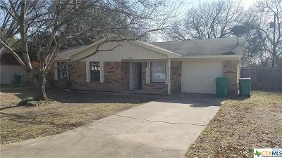 Belton Single Family Home For Sale: 1113 Lindsey Circle