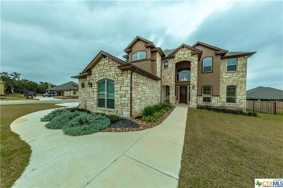 New Braunfels Single Family Home For Sale: 2546 Varrelmann