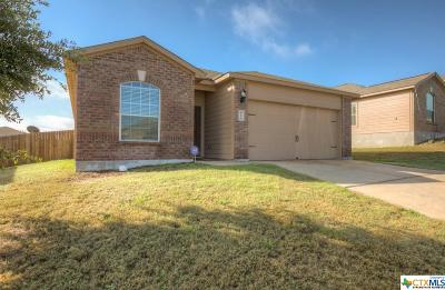 San Antonio Single Family Home For Sale: 6110 Bear Meadows
