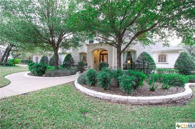 Belton Single Family Home For Sale: 4221 Lago Vista