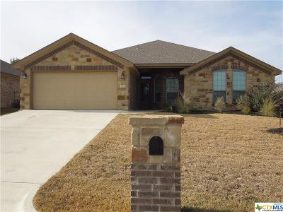 Belton Single Family Home For Sale: 3207 Twin Ridge Drive