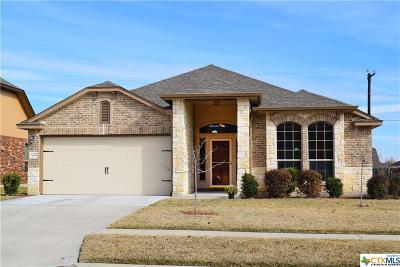 Spanish Oaks Single Family Home For Sale: 6610 Golden Oak Lane