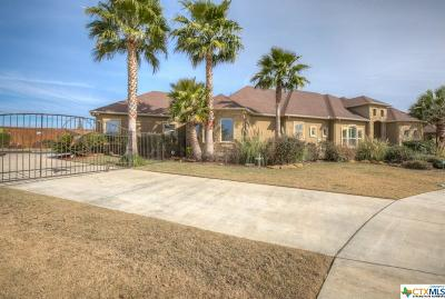 New Braunfels Single Family Home Pending Take Backups: 2307 Megan