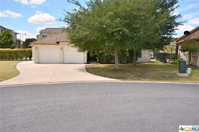 New Braunfels TX Single Family Home For Sale: $349,000