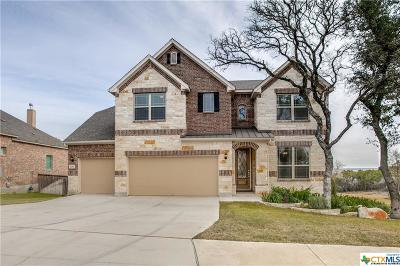 New Braunfels Single Family Home For Sale: 1201 Creek