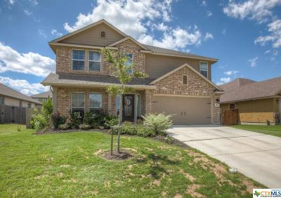 New Braunfels Single Family Home For Sale: 952 Divine