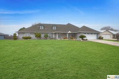 New Braunfels Single Family Home For Sale: 126 Sky Country