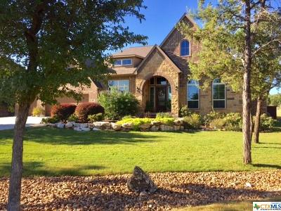 New Braunfels Single Family Home For Sale: 904 Wilderness