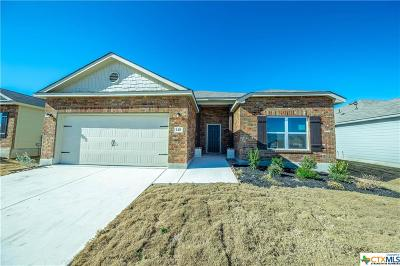 New Braunfels Single Family Home For Sale: 140 Fabarm