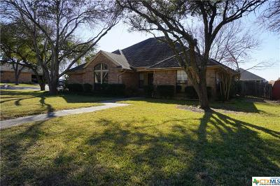 New Braunfels Single Family Home For Sale: 1896 Palace