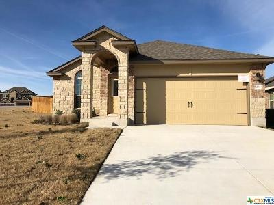 Belton TX Single Family Home For Sale: $182,710