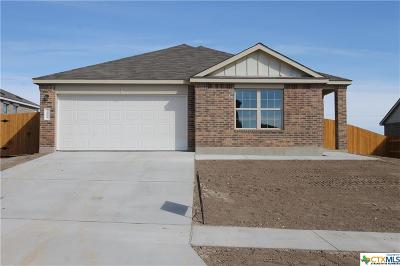 Harker Heights, Killeen, Temple Single Family Home For Sale: 3805 Endicott