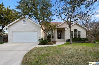 San Marcos Single Family Home For Sale: 2515 Miss'um Pointe