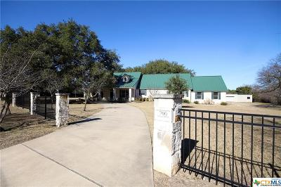 Salado Single Family Home For Sale: 700 College Hill Drive