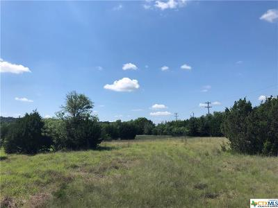 Copperas Cove Commercial For Sale: 001 Big Divide
