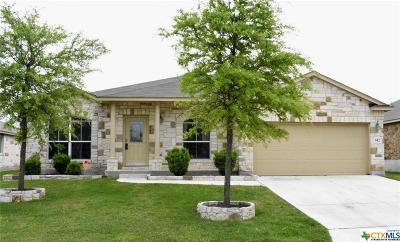 New Braunfels Single Family Home For Sale: 942 Avery Pkwy
