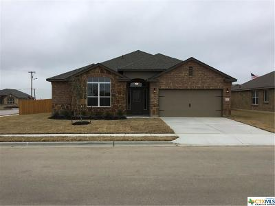 Killeen Single Family Home For Sale: 9407 Cricket Drive