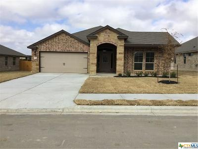 Killeen Single Family Home For Sale: 205 Christopher Drive