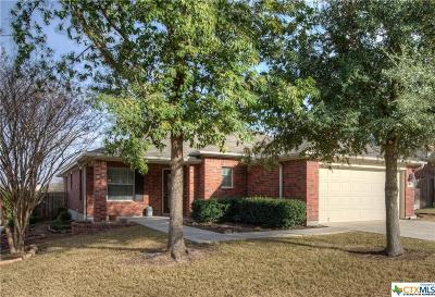 New Braunfels Single Family Home For Sale: 350 Maple Way