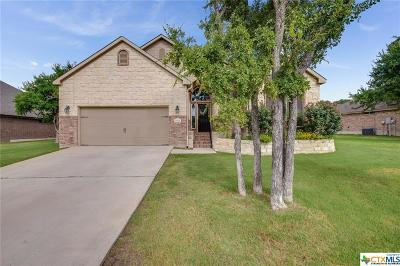 Belton Single Family Home For Sale: 2501 Twin Ridge Court