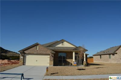 Killeen Single Family Home For Sale: 201 Christopher Drive