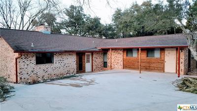 Canyon Lake Single Family Home For Sale: 2318 Triple Peak Drive