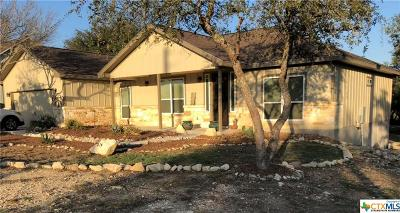 Canyon Lake Single Family Home For Sale: 870 La Paloma Drive