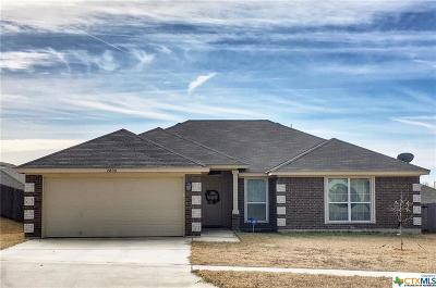 Killeen Single Family Home For Sale: 2800 Tara Drive