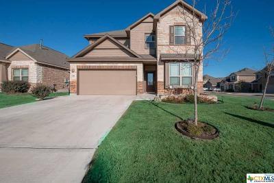 San Antonio Single Family Home For Sale: 13801 Bellows