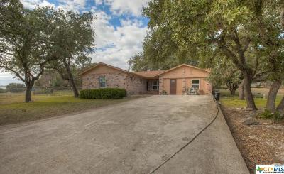 Canyon Lake Single Family Home For Sale: 119 Cliffwood