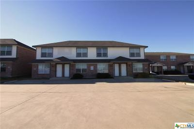 Killeen Multi Family Home For Sale: 807 Leifester Circle #A, B, C,