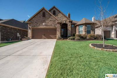 San Antonio Single Family Home For Sale: 18719 Gran Mesa