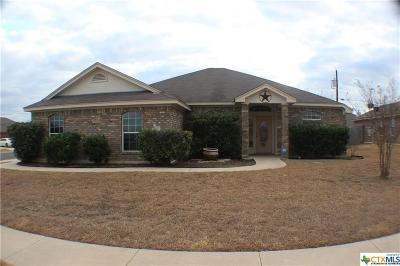 Killeen Single Family Home For Sale: 4300 Neta Drive
