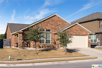 San Marcos Single Family Home For Sale: 109 Pincea