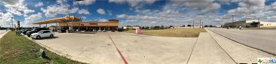 Killeen Commercial For Sale: 5201 Trimmier Road