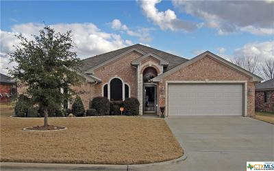 Belton Single Family Home For Sale: 3110 Matador Drive